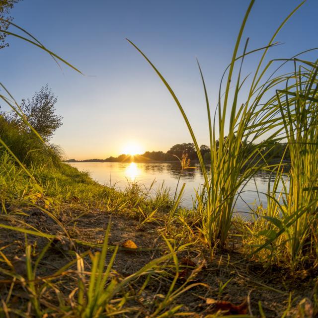 Destination Sud Val De Loire Le Cher Adn Territoire