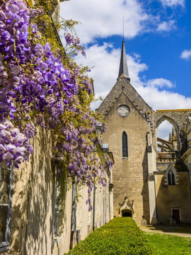 Destination Village Pontlevoy Musee Dans La Rue