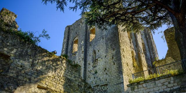 Donjon de Montrichard Val de Cher, cité médiévale en Sud Val de Loire