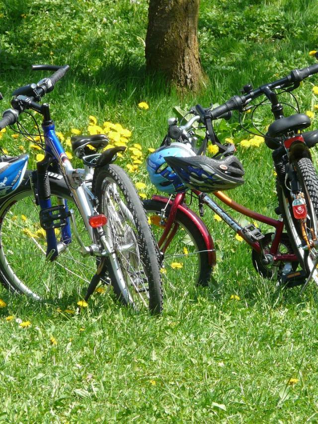 randonnées à vélo en Sud Val de Loire