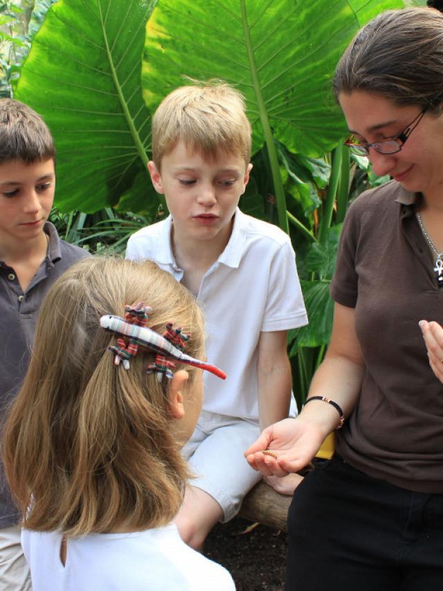 Rende-vous pédagogique avec un soigneur au Zooparc De Beauval