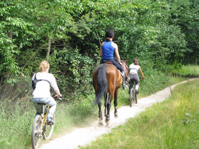 randonnée à cheval et calèche