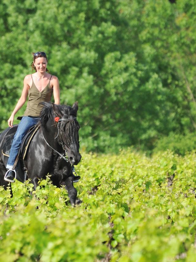 Randonnée à cheval en Sud Val de Loire