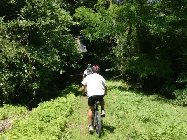 Parcours et circuits à vélo en Sud Val de Loire