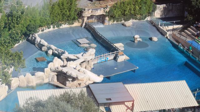 Zoo De Beauval Amenagements (1)
