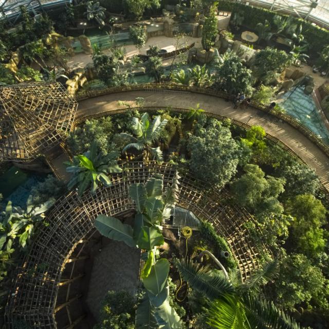Nouveauté 2020- Zoo Beauval Dome Equatorial
