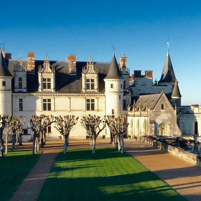 Chateau Amboise NON LIBRE DE DROIT