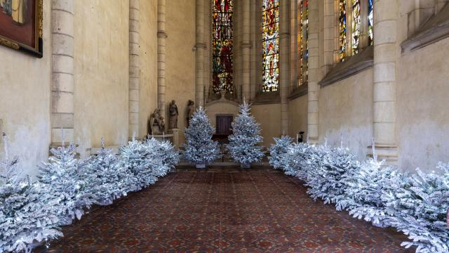 Le vendredi 27 novembre 2020 à Blois au château royal, les décorations de Noël dans la salle des états généraux, les appartements royaux de l'aile François Premier et dans la chapelle.