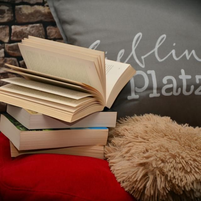 Livres Et Lectures Sur Le Val De Loire, La Touraine Et La Sologne