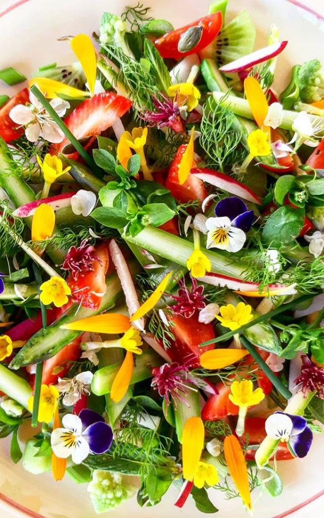 Salade Gourmande Sauvage Thierry Pszonka
