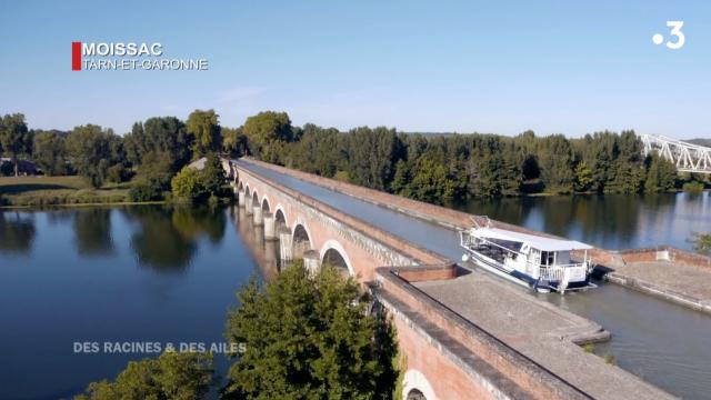 Des Racines Et Des Ailes Au Pays De Garonne