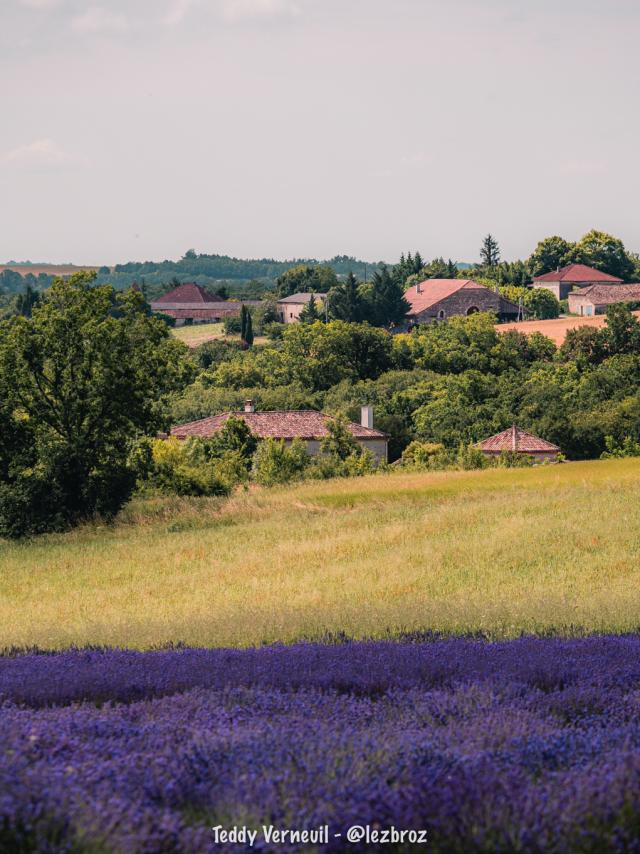 Coteaux du Quercy entre vergers et pierre blanche