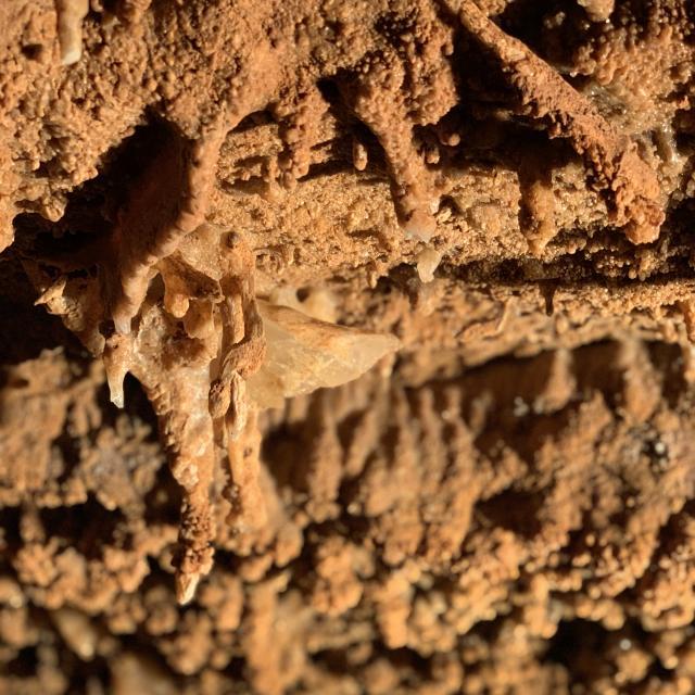 Formations géologiques dans la grotte du bosc