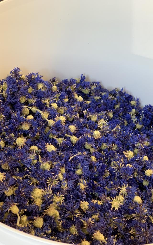 Fleurs Séchées Touticaut