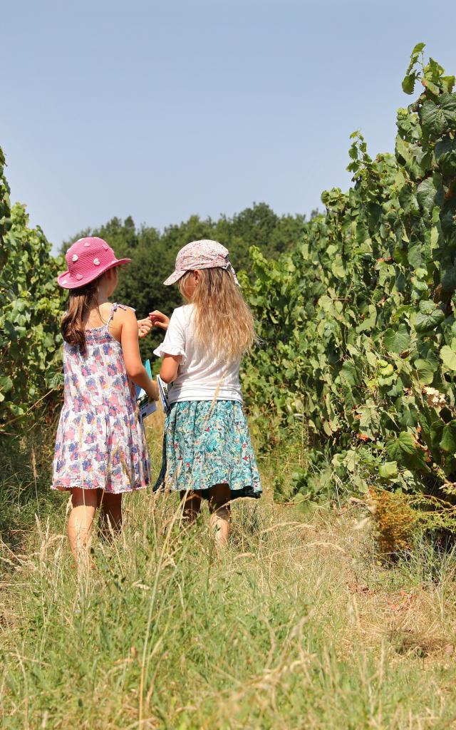 Enigmes dans les vignes