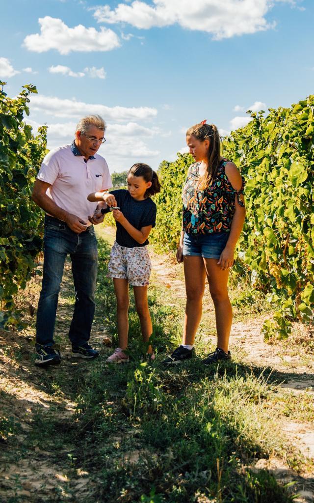 Secrets du sud-ouest, énigmes dans les vignes