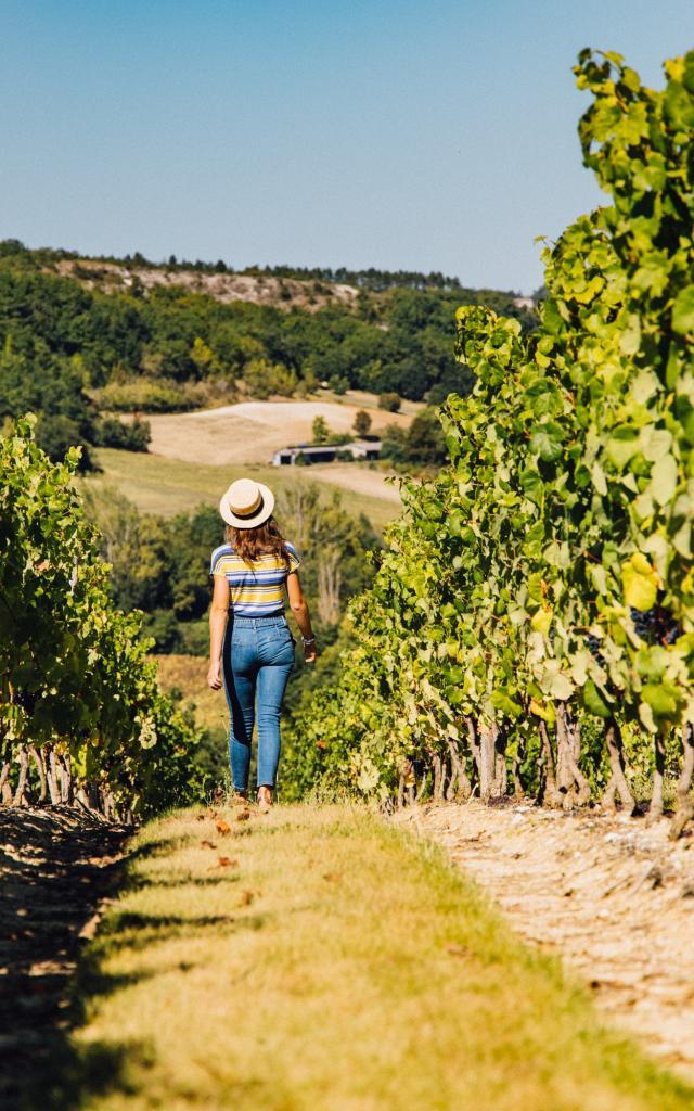 Toutes nos appellations viticoles