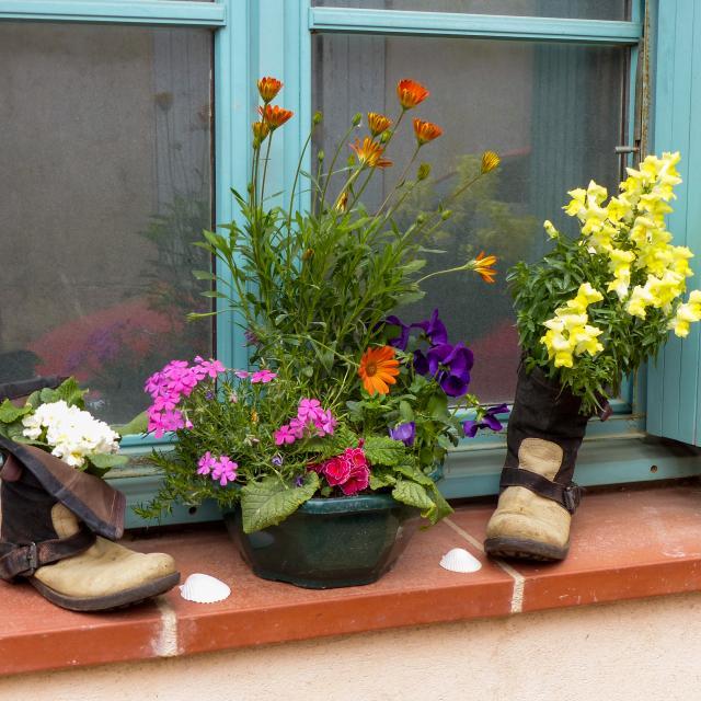 Chaussures fleuries le long ud chemin de Saint-jacques de Compostelle