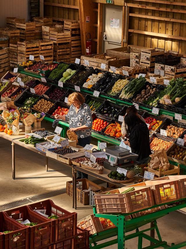 Etal de fruits et légumes des Jardins de Cocagne de Limon