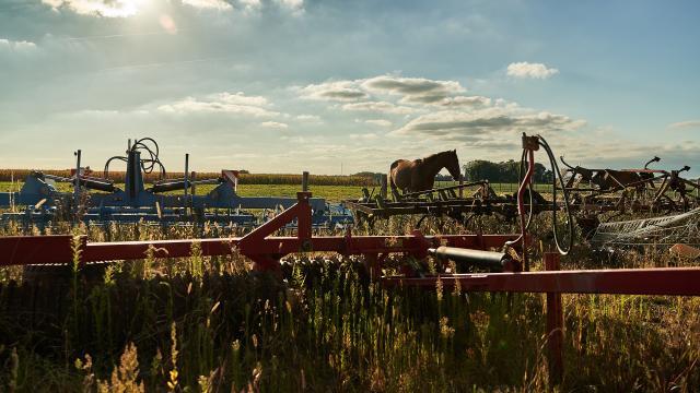 Ferme de la Martinière - Engins agricoles