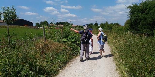 Visite du Plateau de Saclay