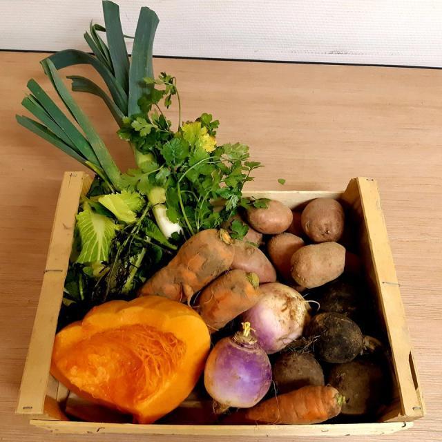 AMAP Pont Du Routoir - panier de légumes