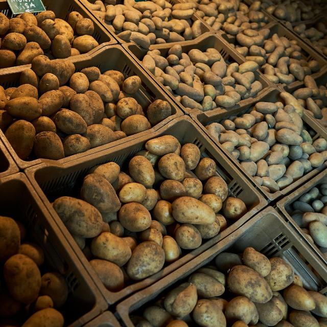 Ferme Trubuil - caisses de pommes de terre