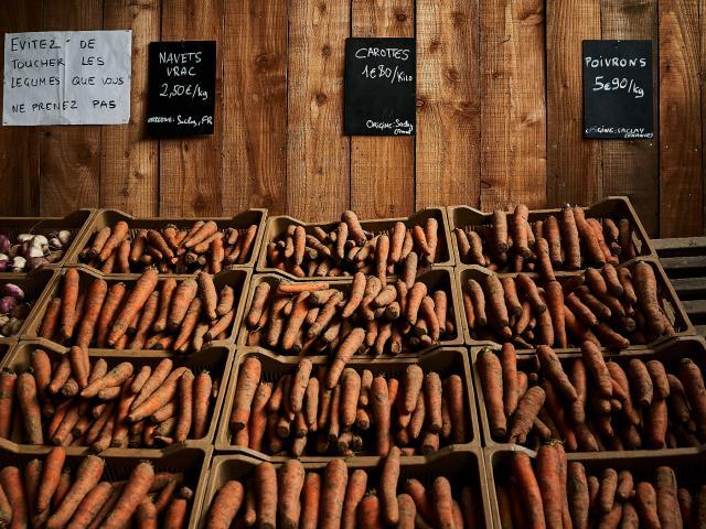Ferme Trubuil - vente de carottes