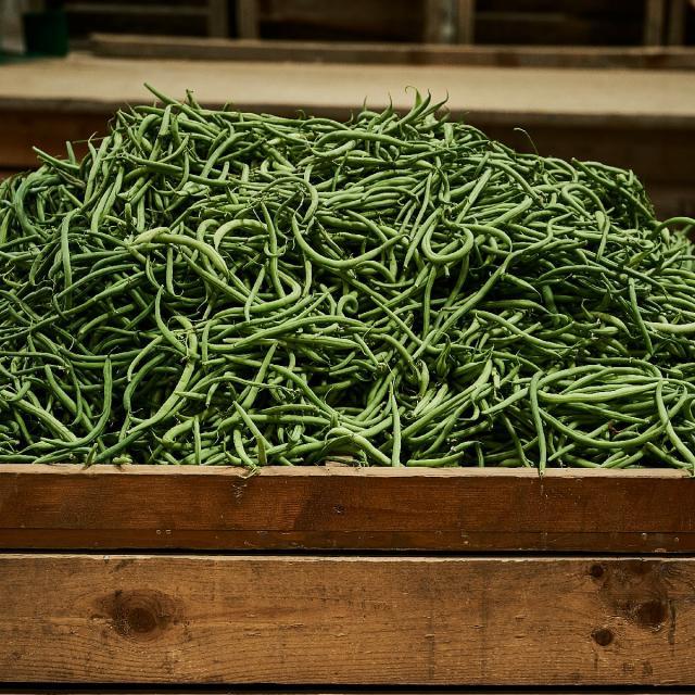 Ferme Trubuil harictos verts dans caisse en bois