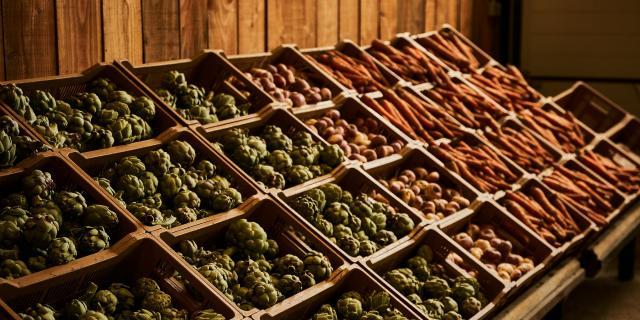 Ferme Trubuil - étal de légumes
