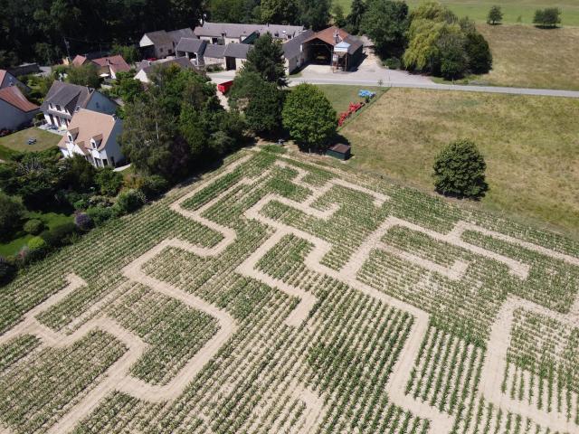 Ferme de Romainville - Labyrinthe de maïs