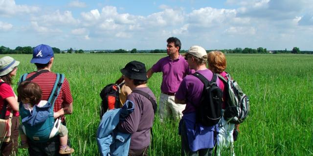 Emmanuel Vandame - Visite champs de blé - Ferme et Fournil Vandame