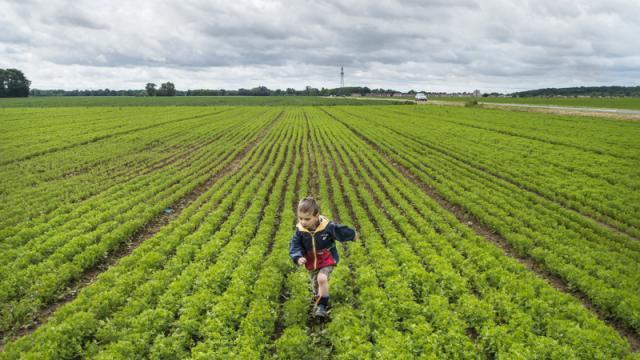 Enfant qui court dans un champs - Jardins de Cérès - Plateau de Saclay