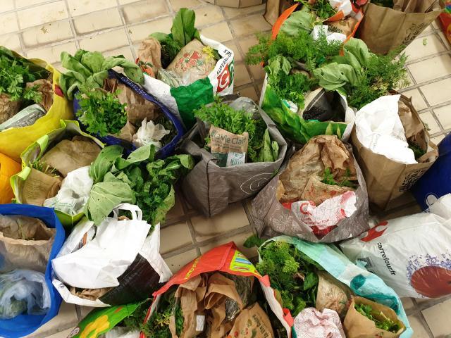 AMAP Massy Manger Bio - Distribution de Légumes