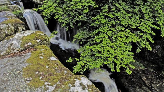 Cascades des Jarrauds à St Martin Château