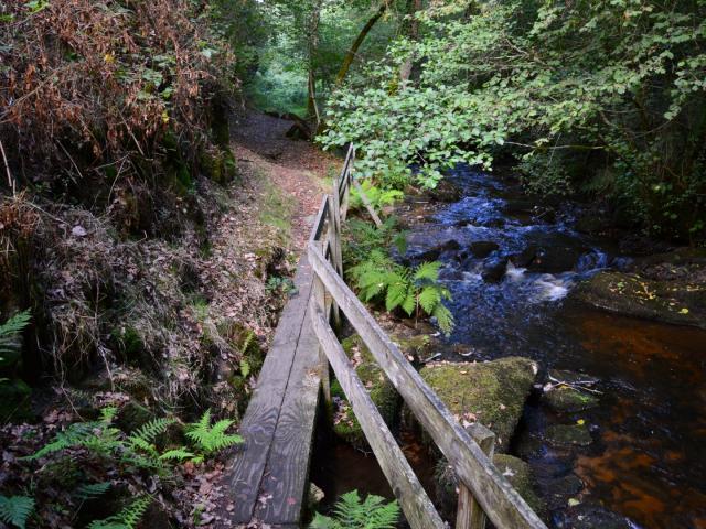 Barrière en bois dans les gorges du Verger, Bourganeuf