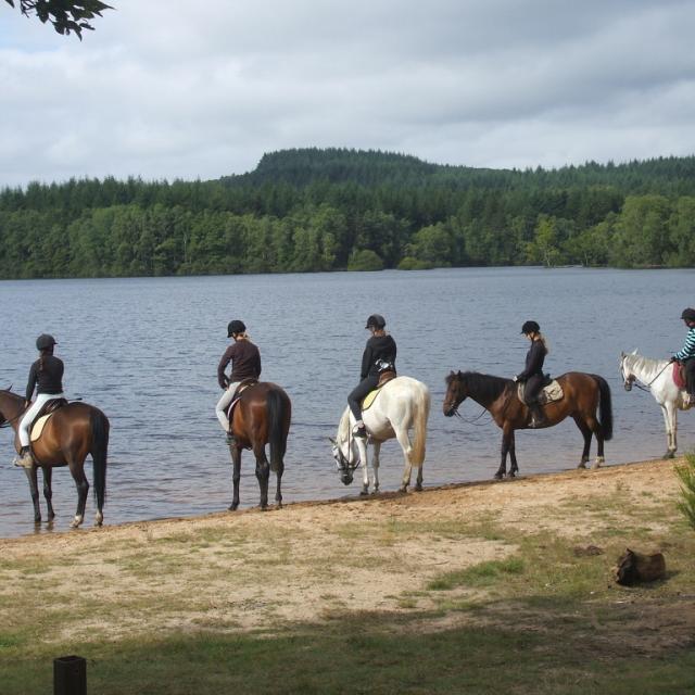 Randonnée à cheval - La Creuse
