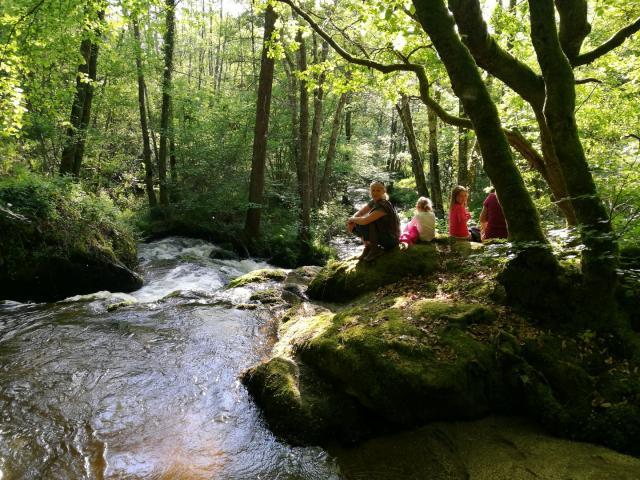 Randonée Le Bois Des Boeufs