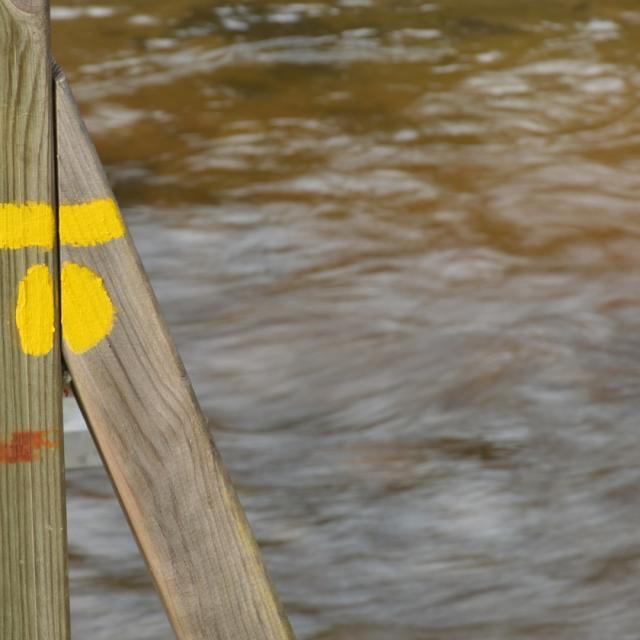 Trace jaune sur la randonnée du Bois des Boeufs