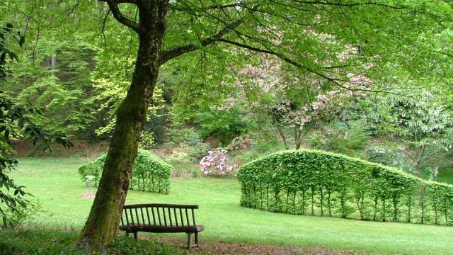 Arboretum de la Sedelle à Crozant