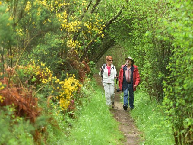 Randonnée pédestre dans la Creuse
