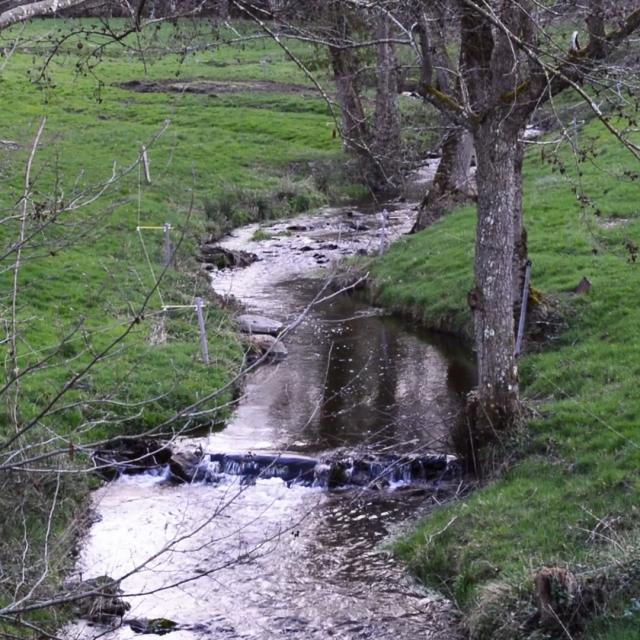 Ruisseau Le Verreau en Creuse