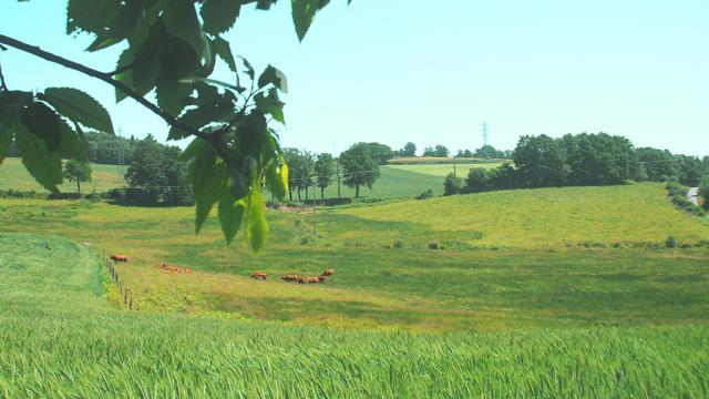 Découvrez Les Paysages Creusois, La Creuse