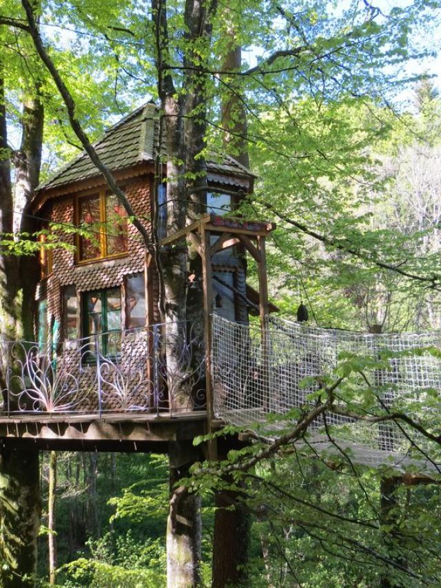 Cabane dans les arbres