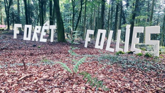 Foret Follies 3