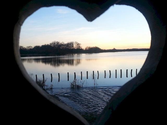 Coeur Etang Des Landes