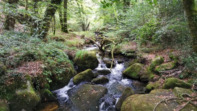 Cascades d'Augerolles