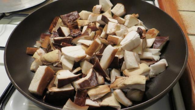Cèpes - champignons en Creuse