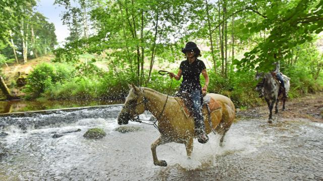 Équitation dans la Creuse