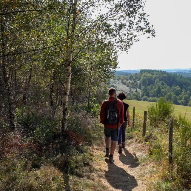 randonnee-plateau1.jpg